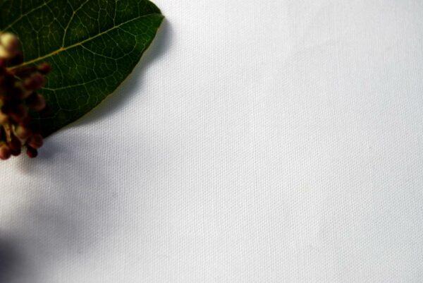 Organic Linen 100% 6s Ivory