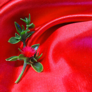 Hemp Silk Satin - RED